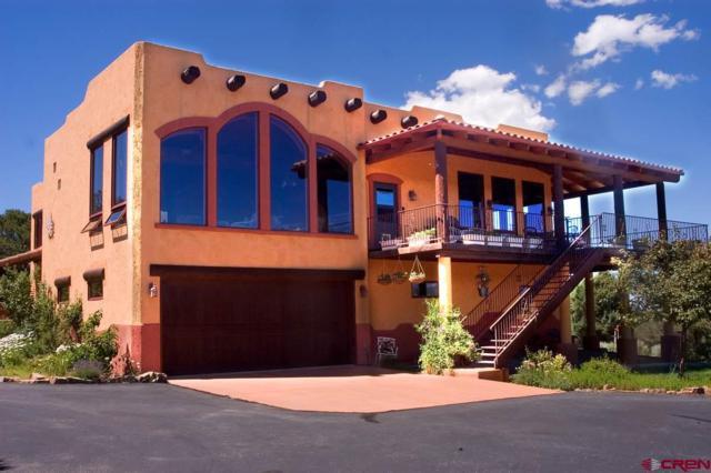 81 Oak Lane W, Ridgway, CO 81432 (MLS #744807) :: Durango Home Sales