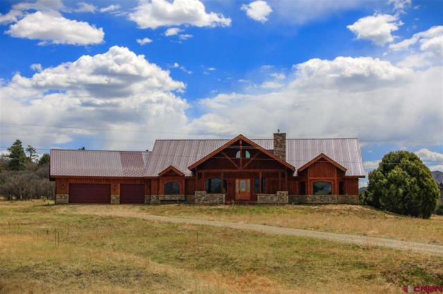 1071 Dichoso Street, Pagosa Springs, CO 81147 (MLS #744917) :: CapRock Real Estate, LLC