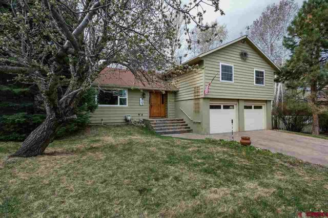 5 Aquarius Place, Durango, CO 81301 (MLS #744920) :: CapRock Real Estate, LLC