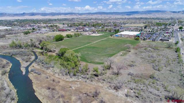 TBD Ogden Road, Montrose, CO 81401 (MLS #744942) :: Durango Home Sales