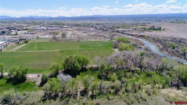 TBD Ogden Road, Montrose, CO 81401 (MLS #744944) :: Durango Home Sales