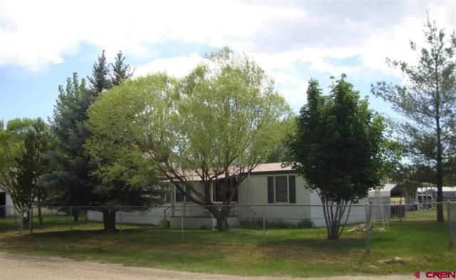 110 N 20th Street, Dolores, CO 81323 (MLS #744960) :: CapRock Real Estate, LLC