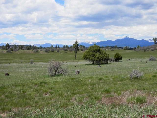 1153 Scenic Avenue, Pagosa Springs, CO 81147 (MLS #744967) :: Durango Home Sales