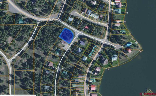 300 Inspiration Drive, Pagosa Springs, CO 81147 (MLS #744968) :: CapRock Real Estate, LLC