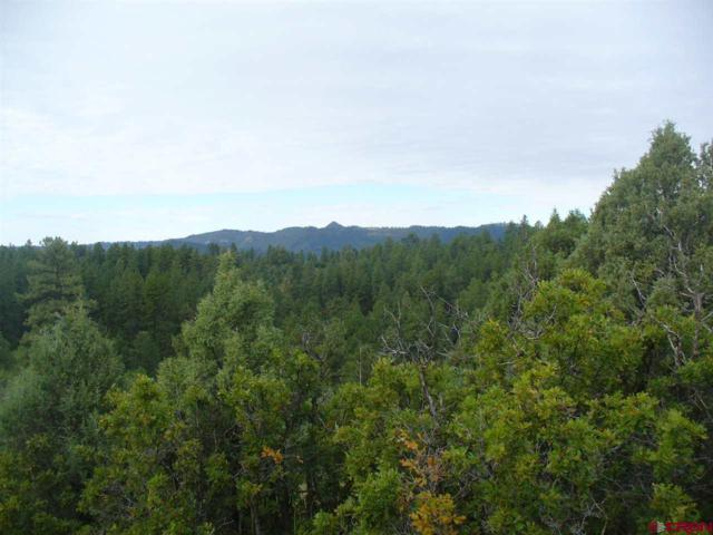 162 Carey's Court, Pagosa Springs, CO 81147 (MLS #744976) :: CapRock Real Estate, LLC