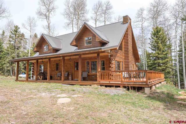 58002 Elk Drive, Montrose, CO 81403 (MLS #744977) :: Durango Home Sales