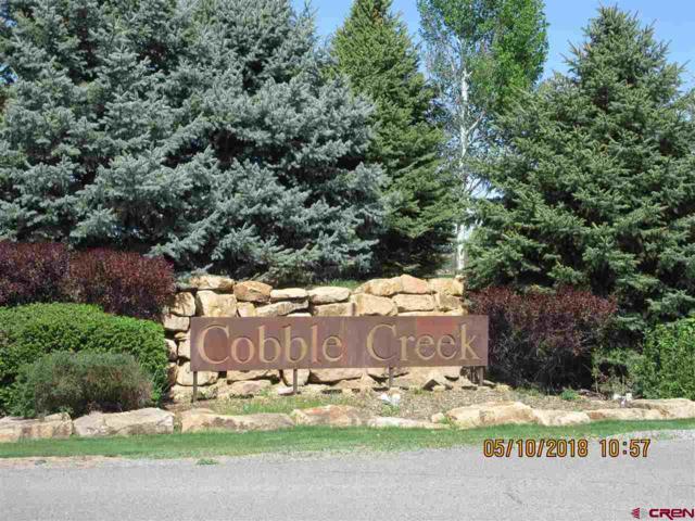 3908 Mount Hayden Drive, Montrose, CO 81403 (MLS #744991) :: CapRock Real Estate, LLC
