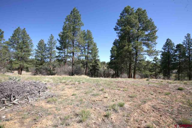 102 South Fork Road, Durango, CO 81303 (MLS #745024) :: Durango Home Sales