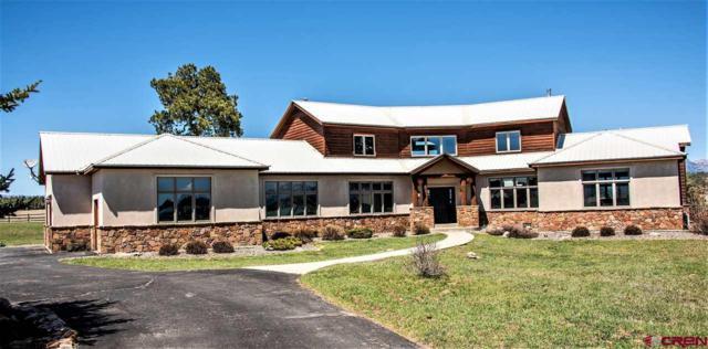 406 Northlake Drive, Pagosa Springs, CO 81147 (MLS #745055) :: CapRock Real Estate, LLC