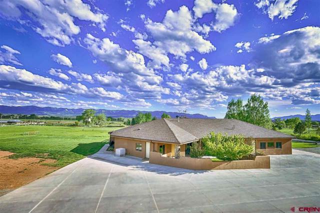 13080 Road 27.6, Dolores, CO 81323 (MLS #745057) :: Durango Home Sales