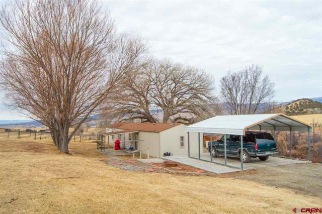 42106 Foothills Road, Paonia, CO 81428 (MLS #745075) :: CapRock Real Estate, LLC