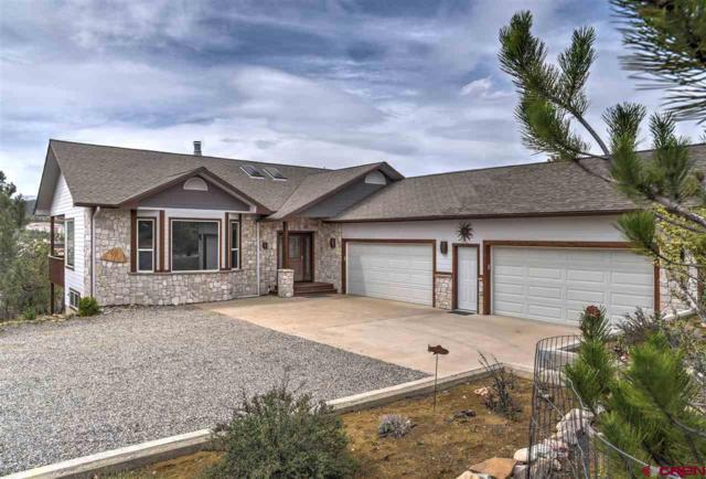 454 Oso Grande, Durango, CO 81301 (MLS #745081) :: Durango Mountain Realty