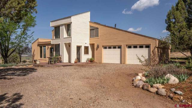 210 Sage Road, Durango, CO 81303 (MLS #745120) :: Durango Mountain Realty