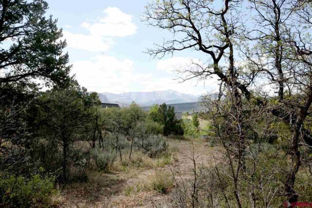 17 La Questa Drive, Durango, CO 81301 (MLS #745186) :: Durango Home Sales
