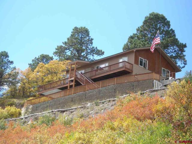 301 Valley View Road, Ridgway, CO 81432 (MLS #745190) :: Durango Home Sales