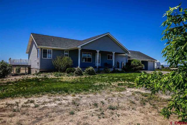 21260 Ivanhoe Way, Austin, CO 81410 (MLS #745191) :: CapRock Real Estate, LLC