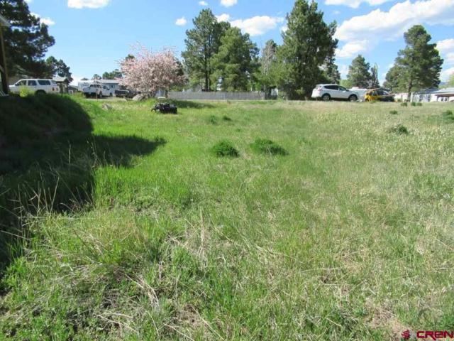 80 Homestead Drive, Pagosa Springs, CO 81147 (MLS #745214) :: Durango Home Sales