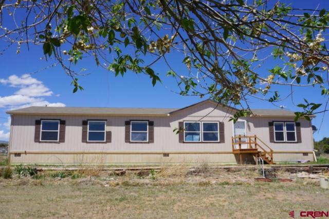 17164 Meadow Drive, Cedaredge, CO 81413 (MLS #745215) :: Durango Home Sales