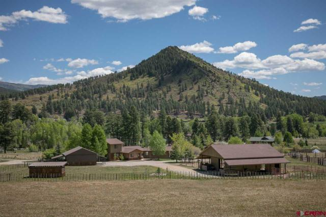 881 Pine River Ranch Circle, Bayfield, CO 81122 (MLS #745223) :: CapRock Real Estate, LLC
