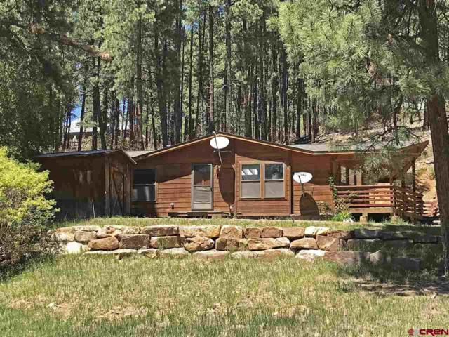 485 Forest Lakes Drive, Bayfield, CO 81122 (MLS #745237) :: CapRock Real Estate, LLC