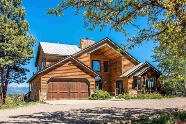 46 Bennett Court, Pagosa Springs, CO 81147 (MLS #745262) :: CapRock Real Estate, LLC