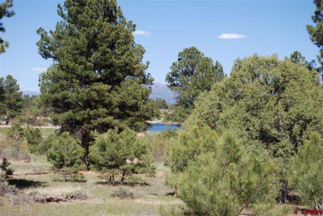 122 Stevens Circle, Pagosa Springs, CO 81147 (MLS #745285) :: CapRock Real Estate, LLC