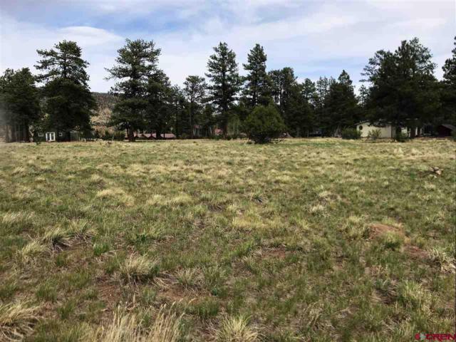 178 Conifer Drive, South Fork, CO 81154 (MLS #745291) :: Durango Home Sales