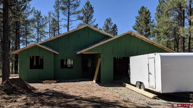 697 Monument Avenue, Pagosa Springs, CO 81147 (MLS #745308) :: Durango Home Sales