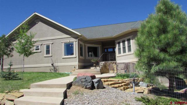 44 Pinon Rd East, Ridgway, CO 81432 (MLS #745330) :: CapRock Real Estate, LLC