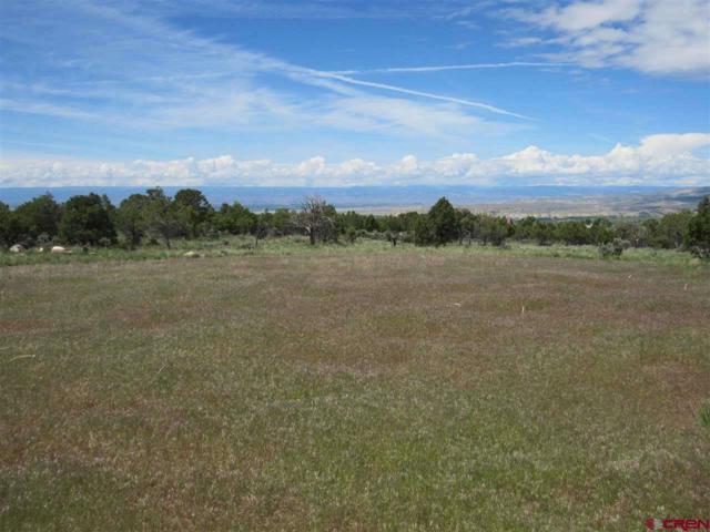 TBD  (Lot 7) Ember Road, Cedaredge, CO 81413 (MLS #745340) :: Durango Home Sales