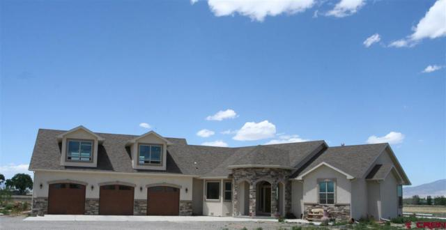 17565 B Road, Delta, CO 81416 (MLS #745373) :: CapRock Real Estate, LLC