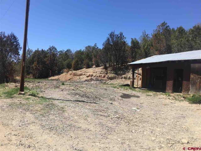 39803 Fruitland Mesa, Crawford, CO 81415 (MLS #745389) :: CapRock Real Estate, LLC