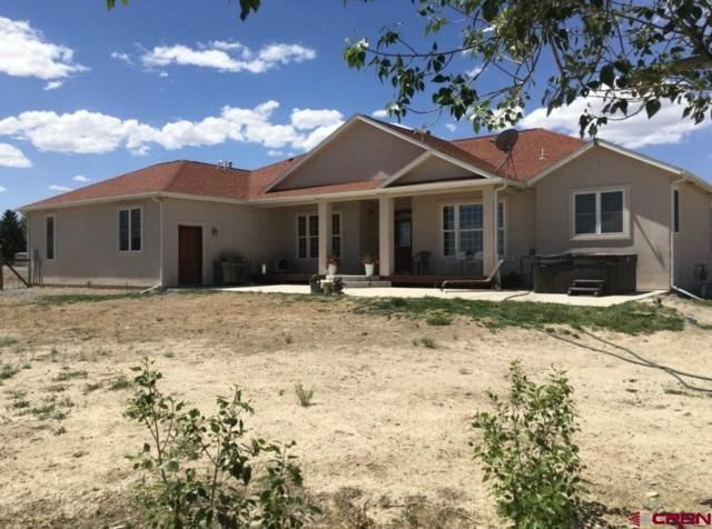 5251 1325 Road, Delta, CO 81416 (MLS #745409) :: CapRock Real Estate, LLC