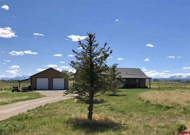 33727 Hwy 145, Redvale, CO 81431 (MLS #745422) :: CapRock Real Estate, LLC