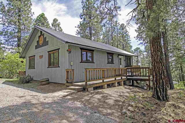 195 Hillside Drive, Bayfield, CO 81122 (MLS #745425) :: CapRock Real Estate, LLC