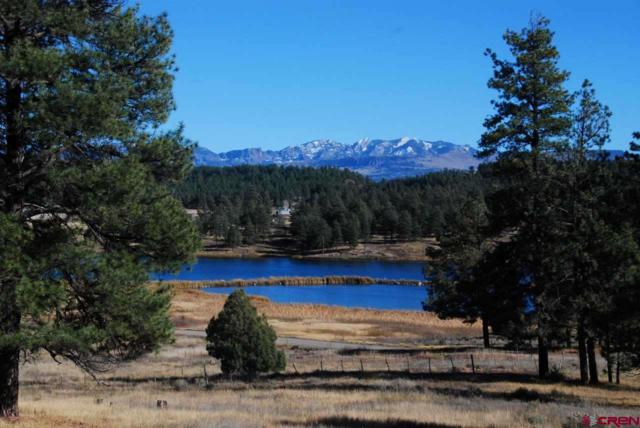 Easement Blue Lake Drive, Pagosa Springs, CO 81147 (MLS #745434) :: CapRock Real Estate, LLC