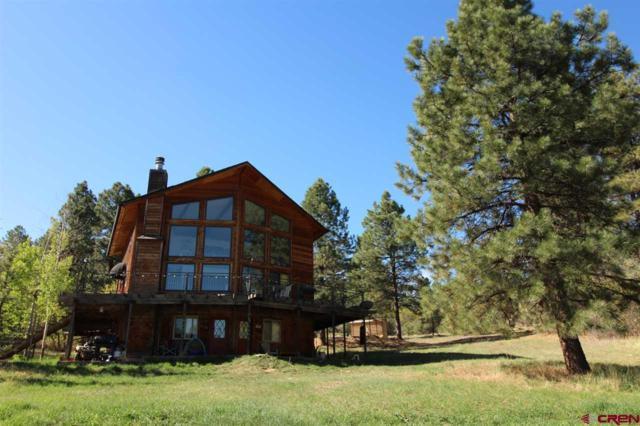 296 North Road, Durango, CO 81303 (MLS #745443) :: Durango Home Sales