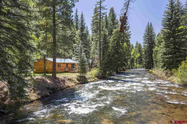 455 Coolwater Road, Bayfield, CO 81122 (MLS #745447) :: CapRock Real Estate, LLC