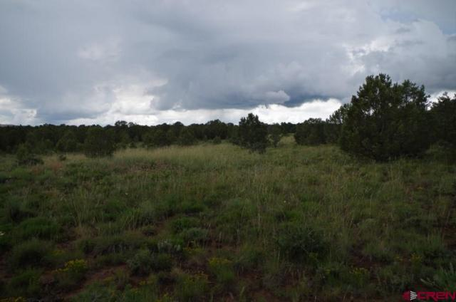tbd County Road 1, Ridgway, CO 81432 (MLS #745449) :: CapRock Real Estate, LLC