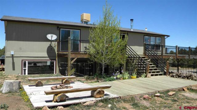 599 Dave Wood Road, Montrose, CO 81403 (MLS #745459) :: CapRock Real Estate, LLC