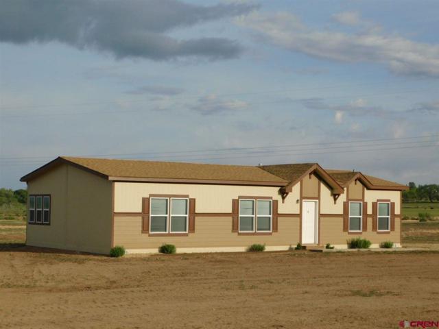 11155 Road 30.1, Mancos, CO 81328 (MLS #745505) :: Durango Home Sales