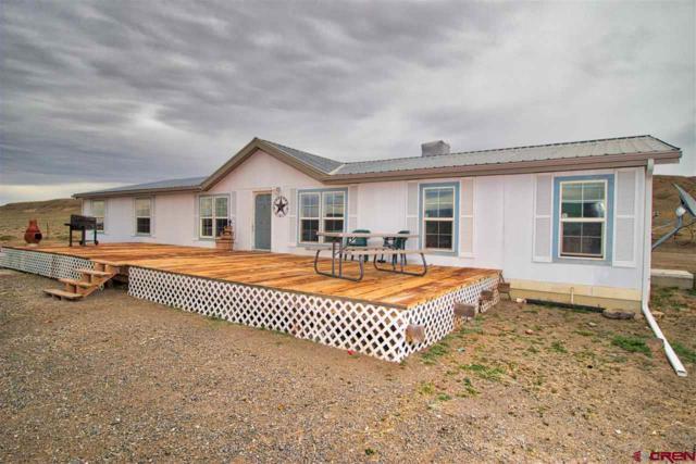 4918 Highway 50 Highway, Whitewater, CO 81527 (MLS #745516) :: CapRock Real Estate, LLC