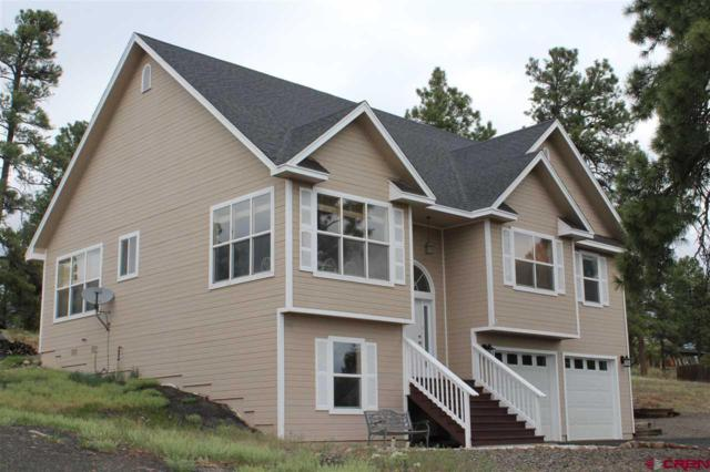 66 Putter Court, Pagosa Springs, CO 81147 (MLS #745551) :: CapRock Real Estate, LLC
