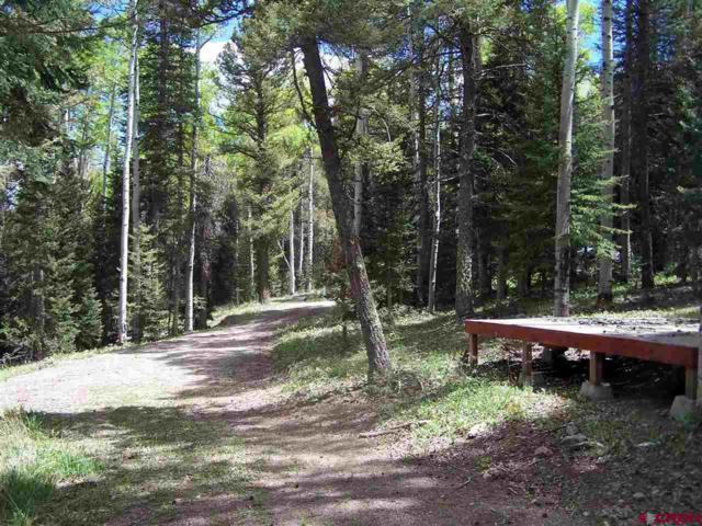 419 Rim Road, Cimarron, CO 81220 (MLS #745606) :: Durango Home Sales
