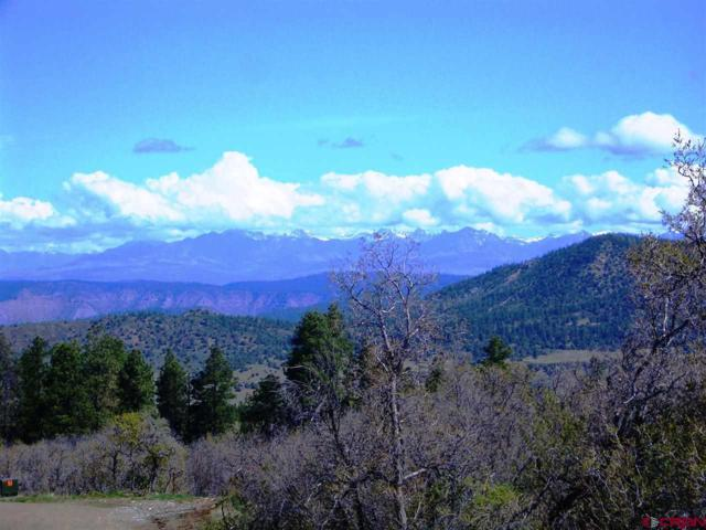 X Cold Spring Ct., Pagosa Springs, CO 81147 (MLS #745610) :: CapRock Real Estate, LLC