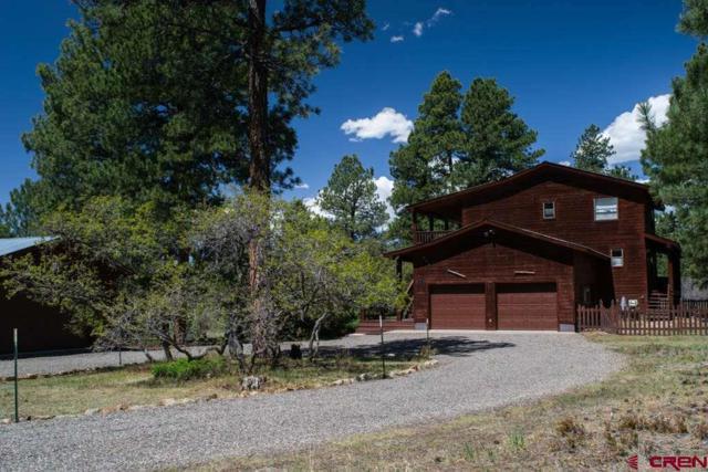 397 Appaloosa Circle, Pagosa Springs, CO 81147 (MLS #745617) :: CapRock Real Estate, LLC