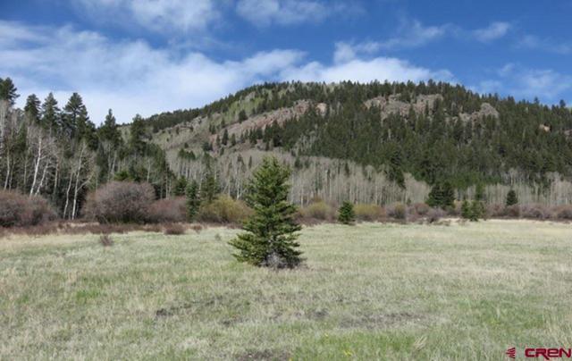 TBD River Run Drive Street, Antonito, CO 81120 (MLS #745666) :: Durango Home Sales