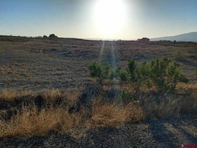 Lot 4 Ruth Land, Delta, CO 81416 (MLS #745684) :: CapRock Real Estate, LLC
