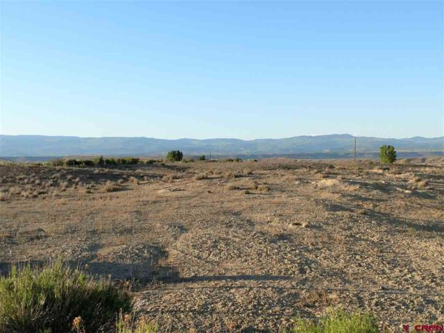 Lot 11 Ruth Lane, Delta, CO 81416 (MLS #745693) :: CapRock Real Estate, LLC