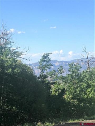 407 Powder Circle, Mesa, CO 81643 (MLS #745736) :: CapRock Real Estate, LLC